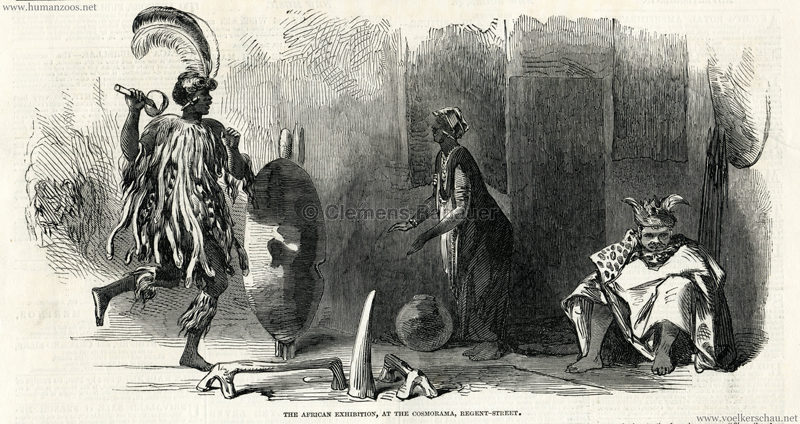 1850.09.14 The Illustrated London News p. 236 - The African Exhibition at the Cosmorama Regent Street