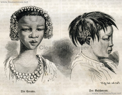 1856 Die Gartenlaube 4776 S 156 Die Azteken, der Buschmann und die Corana 1