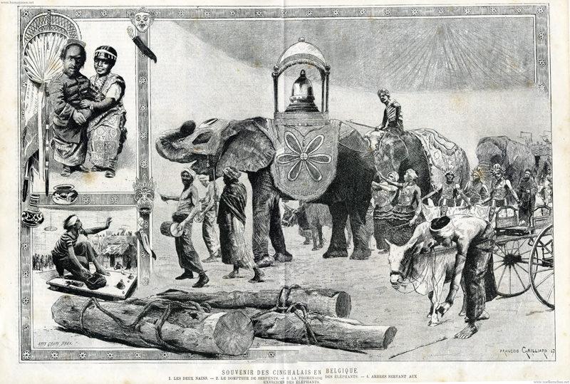 1887 L'Illustration Europeenne - Souvenir des Cinghalais en Belgique