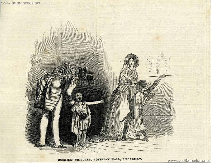 1845.09.06 The Illustrated London News - Bushmen Children - Egyptian Hall Piccadilly 1