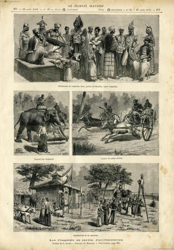 1886.08.29 Le Journal Illustre - Les Cingalais au jardin d'acclimatation