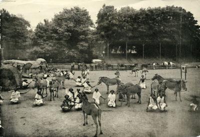 1908 Carl Hagenbeck's Galla-Truppe FOTO 2
