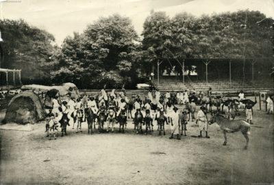 1908 Carl Hagenbeck's Galla-Truppe FOTO 3