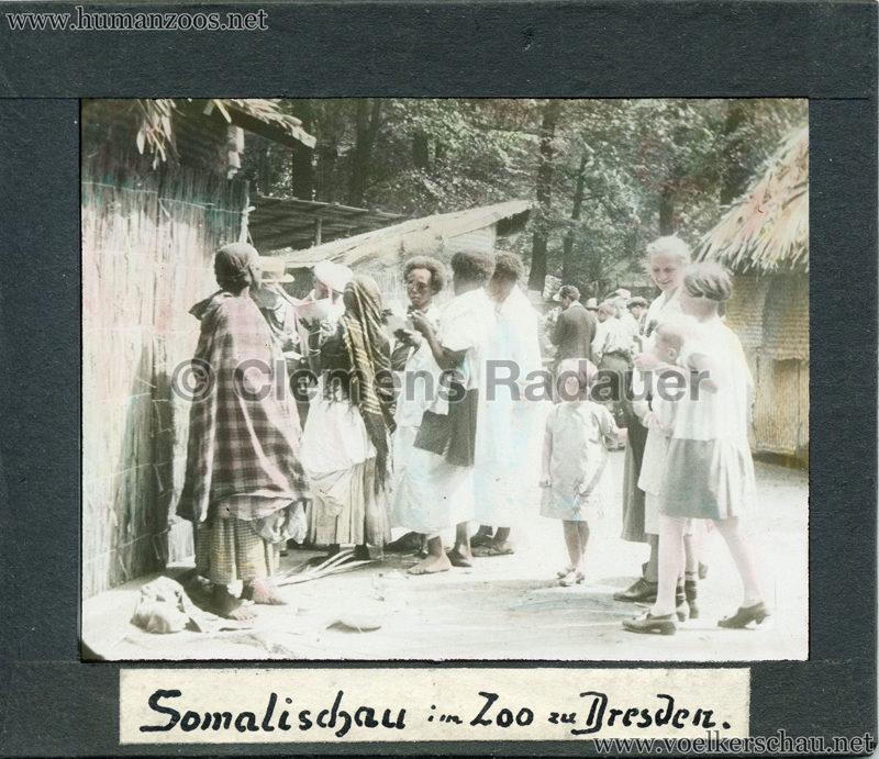 Somalischau im Zoo zu Dresden MIX