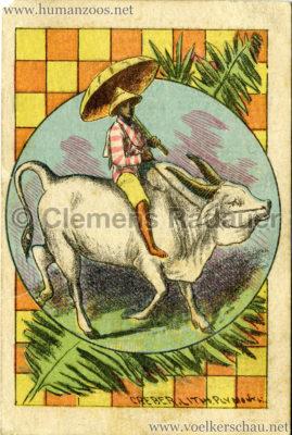 1886 Carl Hagenbeck's Ceylonese Exhibition WERBEKARTE RS
