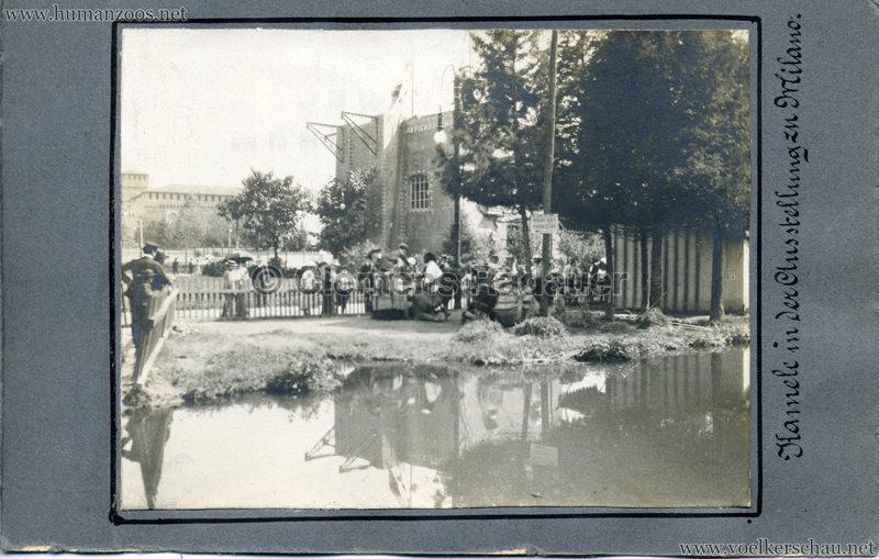 1906 Esposizione - Kamele FOTO