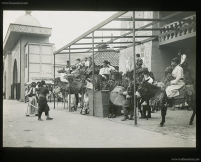 1901 Pan-American Exposition - Cairo - Camels 1