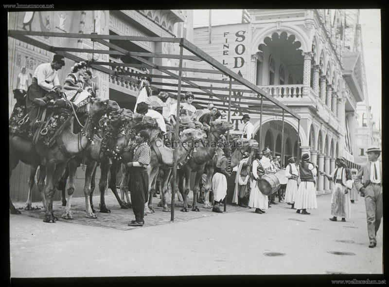 1901 Pan-American Exposition - Cairo - Camels 2