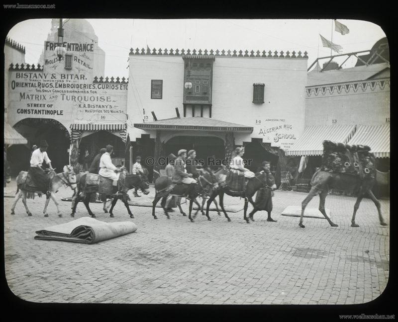 1901 Pan-American Exposition - Cairo - Donkeys