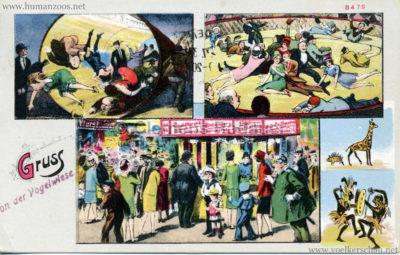 Gruss von der Vogelwiese 2 gel 1933