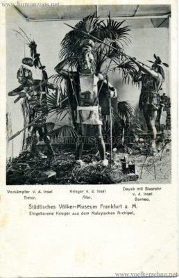 Städtisches Völker-Museum Frankfurt a. M. - Eingeborene Krieger aus dem Malaysischen Archipel