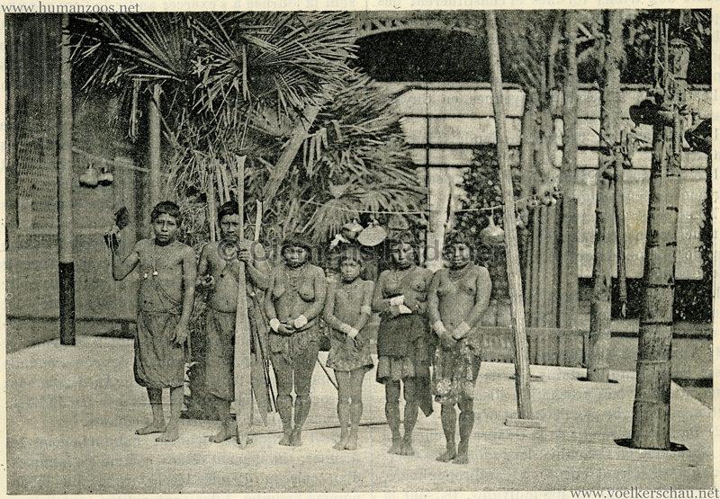 1892 Le Magasin Pittoresque - Les Caraibes du Jardin d'Acclimatation 1