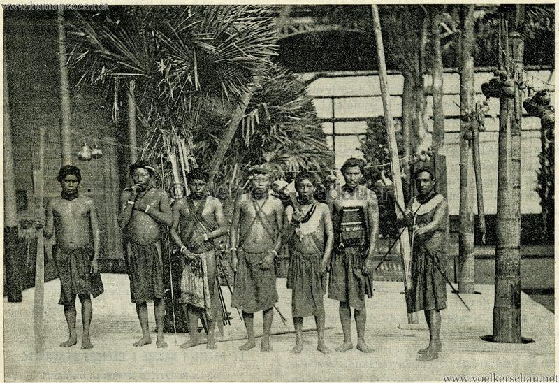1892 Le Magasin Pittoresque - Les Caraibes du Jardin d'Acclimatation 3
