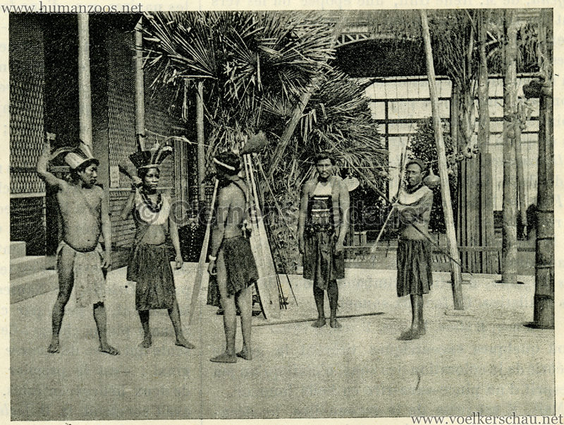 1892 Le Magasin Pittoresque - Les Caraibes du Jardin d'Acclimatation 4