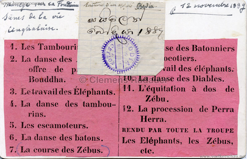 1886 Carl Hagenbeck Ceylonese:Cynghalais:Singhalesen - Attelage avec Zebus CDV RS