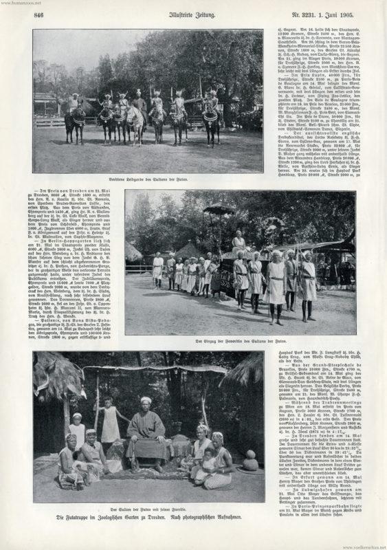 1905.06.01 Illustrirte Zeitung Nr. 3231 - Die Futatruppe im Zoologischen Garten Dresden 2
