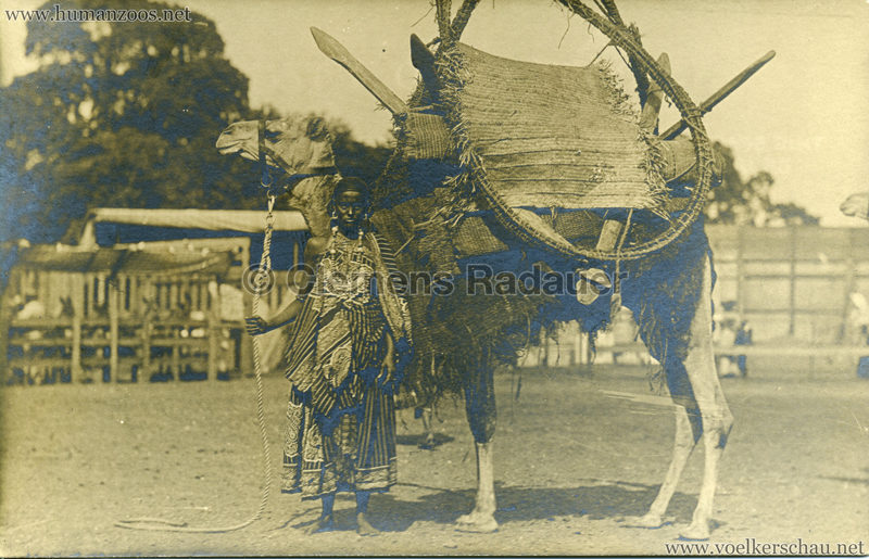Hagenbeck Somalis - Frau mit Kamel 1