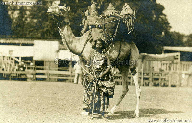 Hagenbeck Somalis - Frau mit Kamel 2