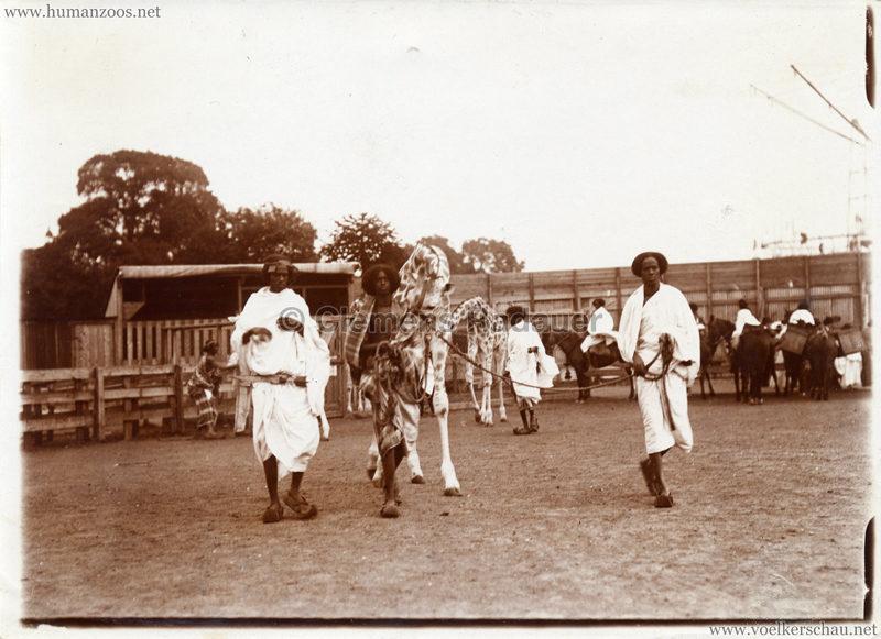 Hagenbeck Somalis - Männer mit Giraffen 2 (Somalis at the Palace) VS