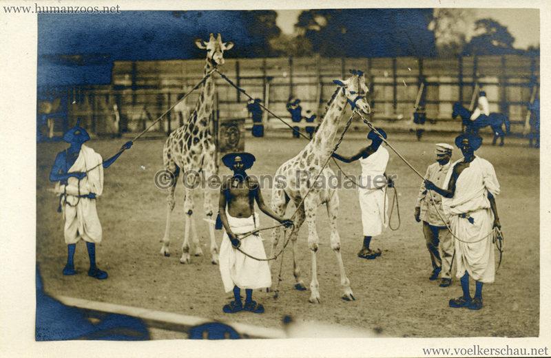 Hagenbeck Somalis - Männer mit Giraffen