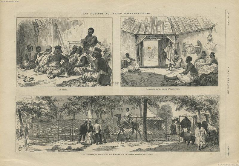 1877.08.04 L'Illustration - Les Nubiens au Jardin d'Acclimatation 1