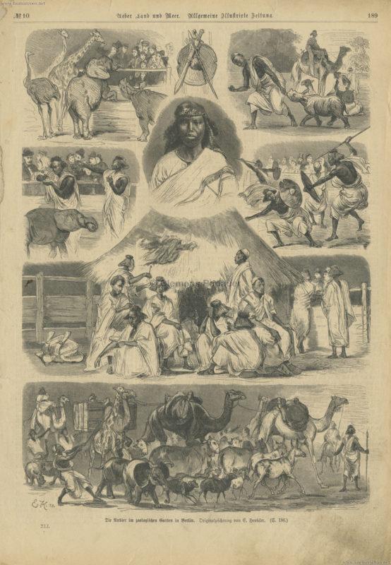 1879 Ueber Land und Meer No 10 S. 189 - Die Nubier im zoologischen Garten in Berlin