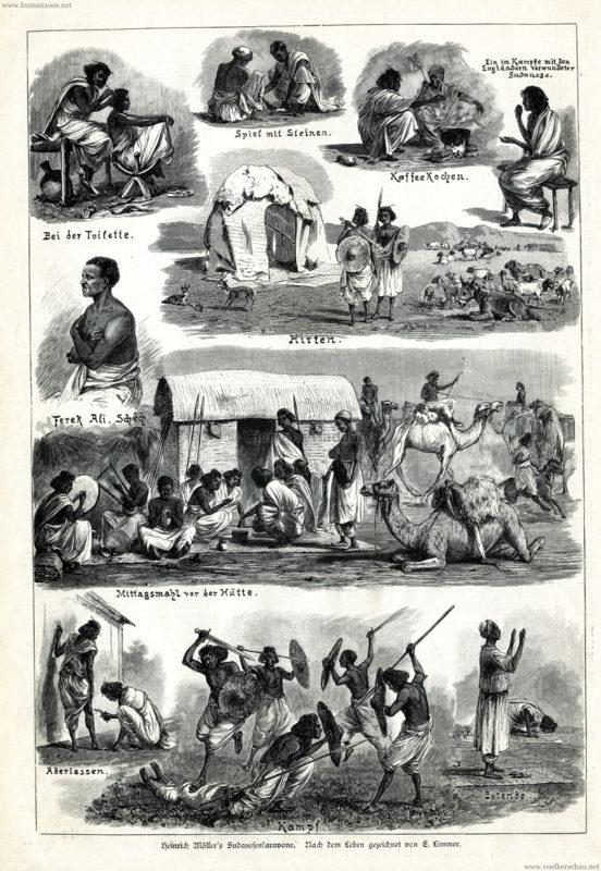 1885.07.18 Illustrierte Zeitung Nr. 2194 - Heinrich Möller's Sudanesenkarawane