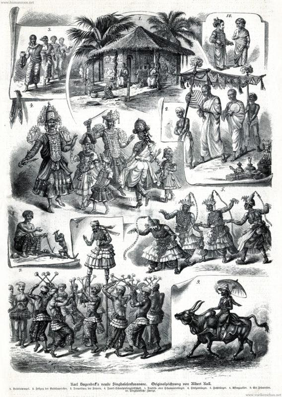 1885.10.03 Illustrirte Zeitung Nr. 2205 - Karl Hagenbeck's neueste Singhalesenkarawane