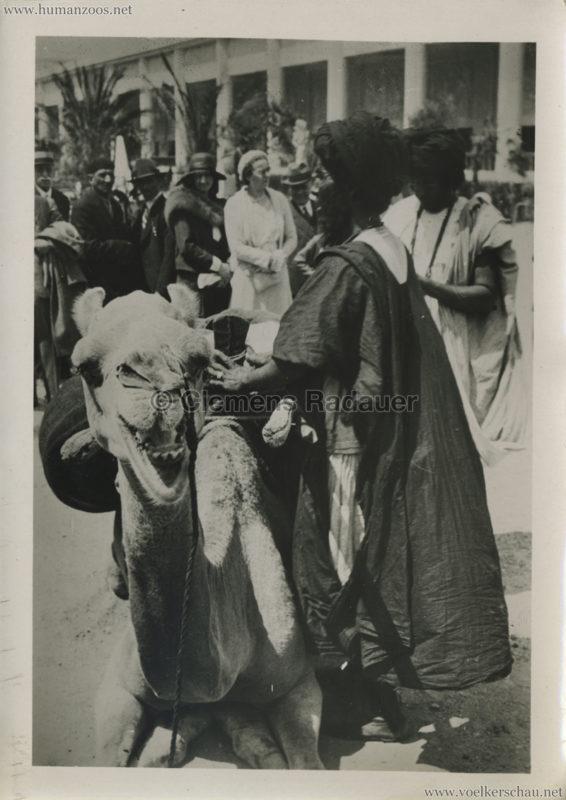 1931 Exposition Coloniale Internationale Paris - AOF Chamelier - PRESSEFOTO
