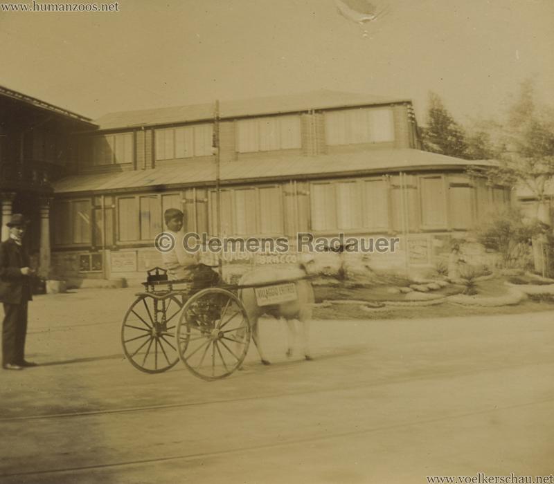 1906 Esposizione a Milano - Carrozzella del viaggio eritreo FOTO