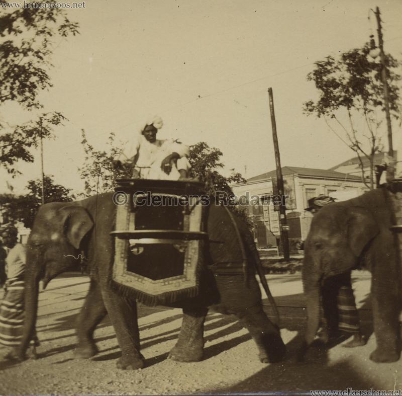 1906 Esposizione a Milano - I Beduini FOTO
