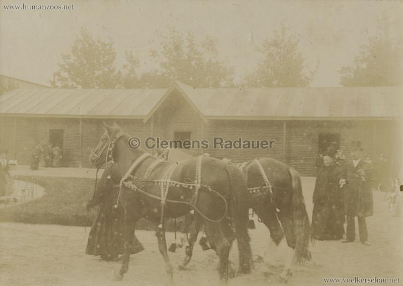 1895 Exposition Russe Hippique et Ethnographique FOTOS D1